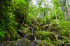 Roaring Fork (GSMNP) -31 by Mosaic Pictures
