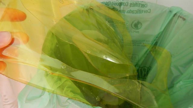 Gelatine Plastic 24