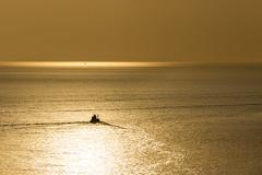 Sunset with fishing boats & palm. Phuket, cape Promthep                 XOKA9111b