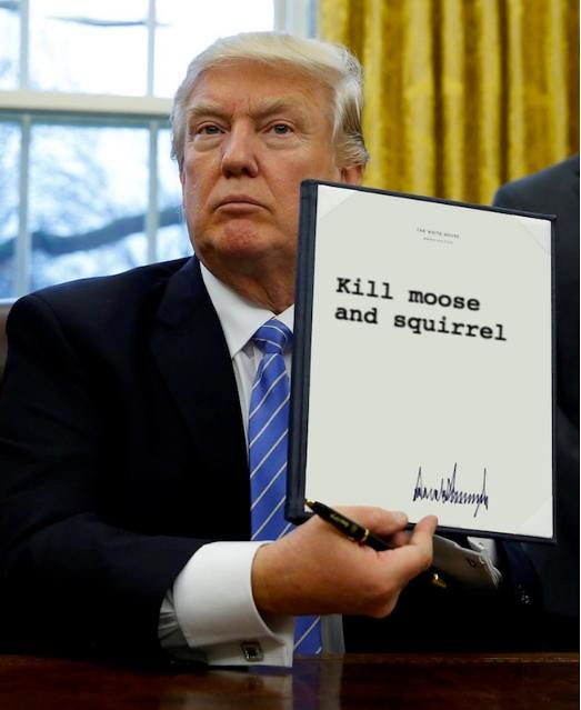 Trump_killmoosensquirrel