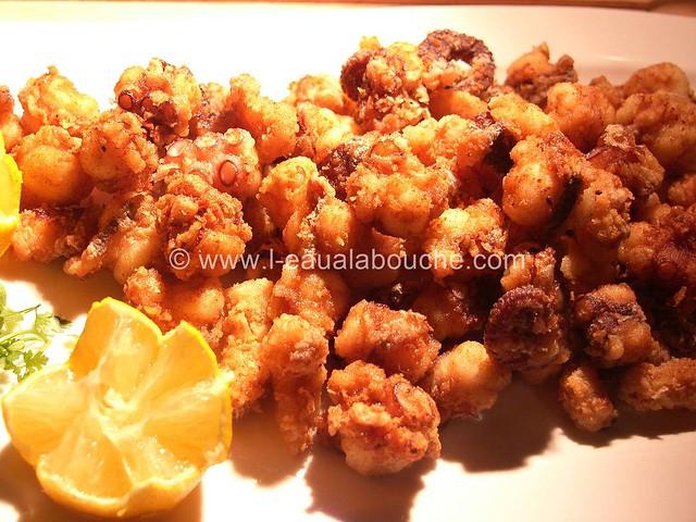 Poulpe Frit-Pulpito Frito © Ana Luthi Tous droits réservés 009