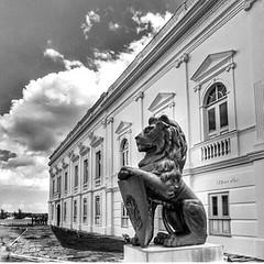 """""""O silêncio é um campo plantado de verdades q aos poucos se fazem palavras""""  * Thiago de Melo com foto do Palácio dos Leões por Neuci Luz #AplausoBlogAuroradeCinema #saoluis #maranhão #click #photographer #instagood #insta_pensadores @luzneuci"""