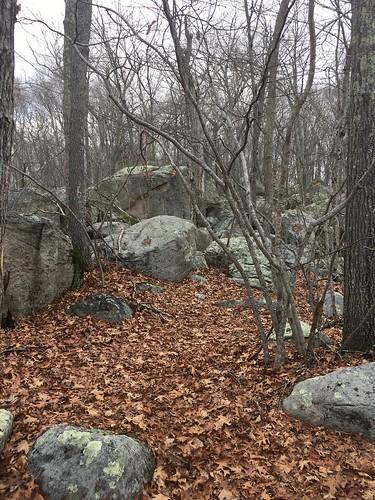Glacial Park, Ledyard, Connecticut