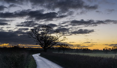 133-365v3 - Today's Sunrise