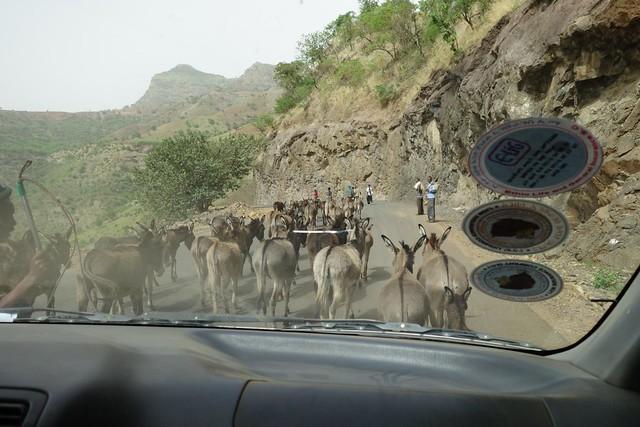 Viagem de Gondar para Axum, Etiópia