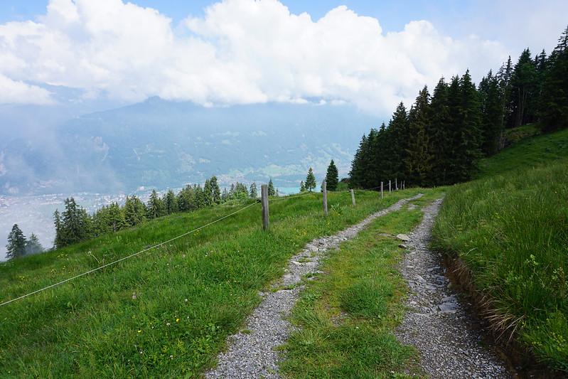 mountaintop path