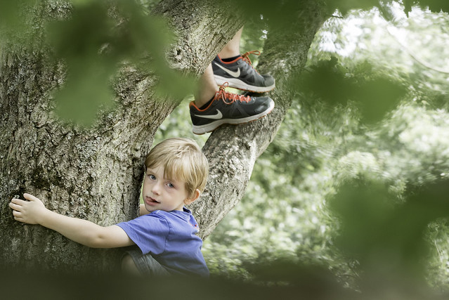 Tree climbing with the big brother