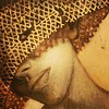 """oi amores :heart:️ ARTE PRA INSPIRAR! BLOG atualizado com as incríveis e elegantes pinturas de """"Aruna Rutks"""" ...muito influenciado por seus estudos, pinta e trabalha com vitrais e afrescos, trabalhos em gráfico e para cinema, esculturas em cerâmicas e met"""