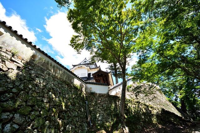 Bitchu Matsuyama castle 8