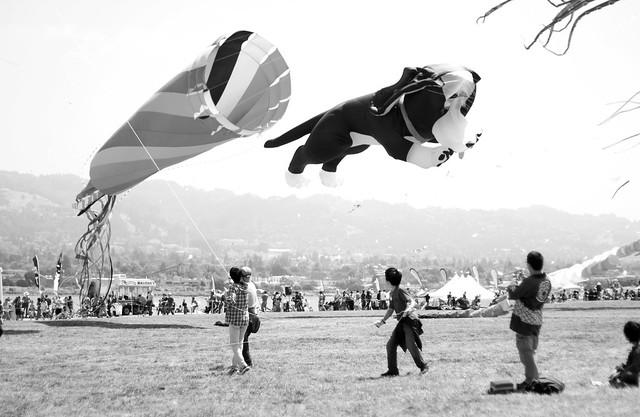 Kite Wrangling