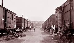 The Bronx's Boxcar Village, 1934