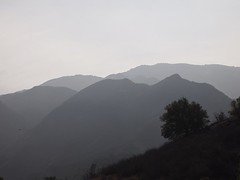 Santa Monica Mountains No. 1 I took a photo drive around the Santa Monica Mountains above Malibu on Wednesday. I went specifically looking for this hazy effect and obviously found it. This reminds me so much of an exercise we did in art class, drawing ima