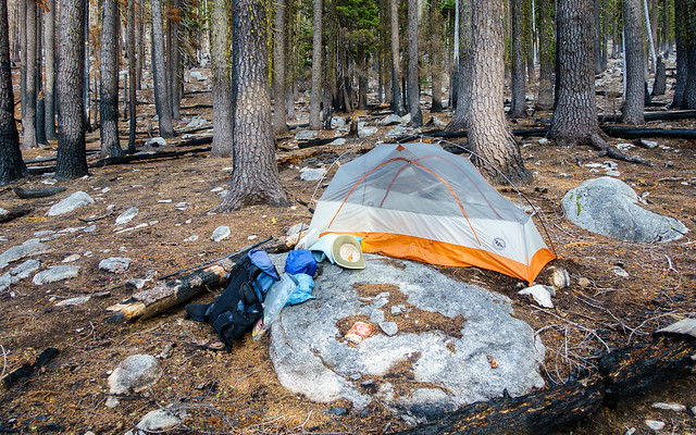 Campsite, July 13