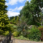 Burnby Hall Gardens 2015-07-16
