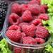 Raspberries / Framboesas