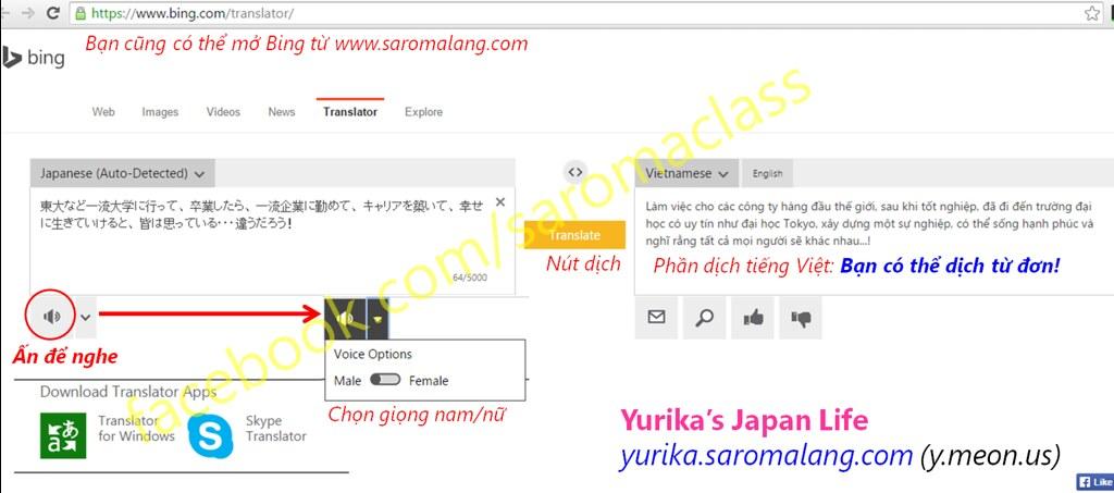 Bing Translator: Cách sử dụng