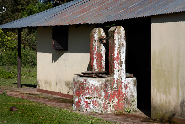 Esteros del Iberá (132)