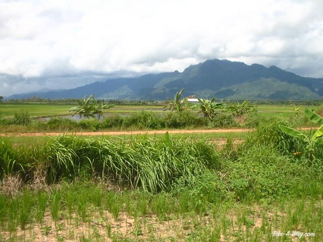 thailandeinde1 455_2 (1)
