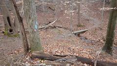 DSCN0986 192 Approaching Wooden-foot bridge
