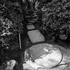 Kyoto - Okochi Sanso Garden walk 2