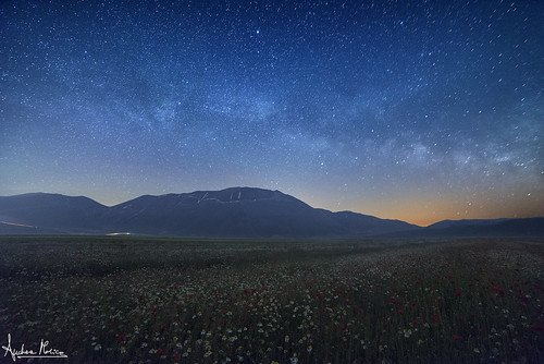 Explosion of stars above the plain