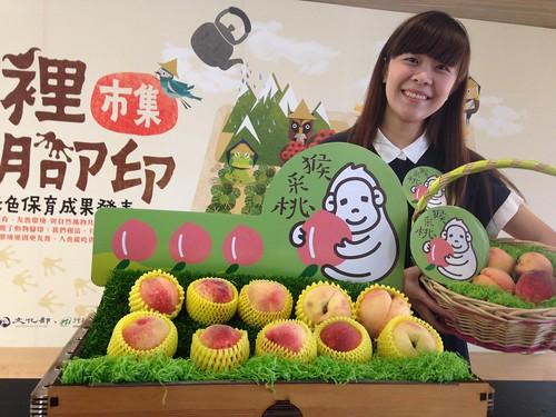 猴采桃甜滋滋,照顧農民也照顧台灣獼猴。攝影:廖靜蕙。
