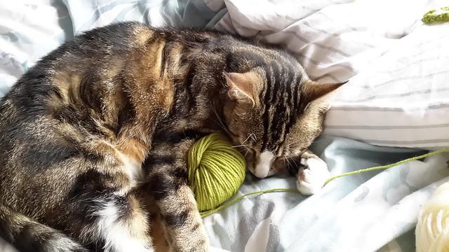 Header of crocheter