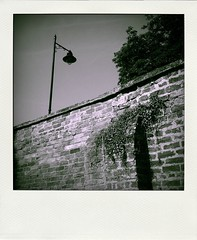 Polaroid B&W