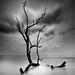 Andaman by jaypur211