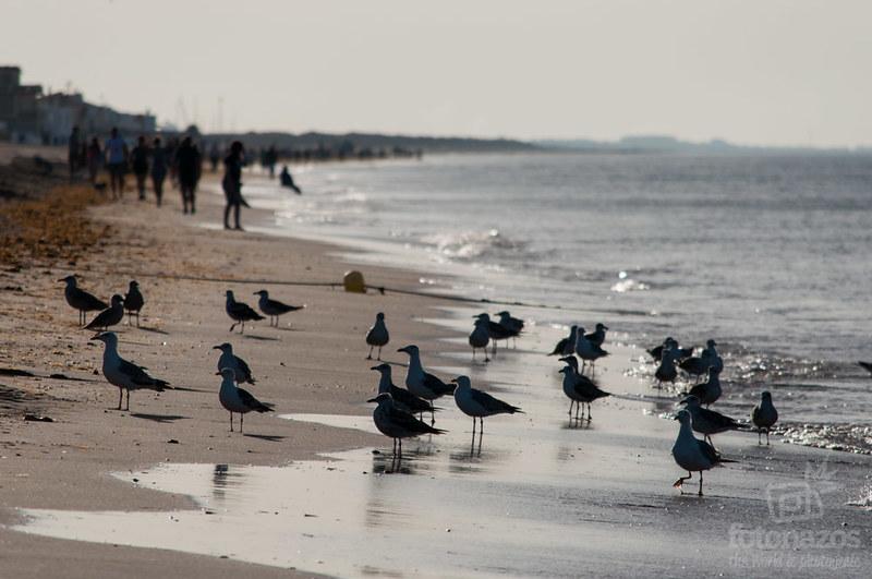 Vacaciones Huelva - Portugal