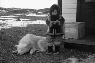 Inuit child and dog / Un enfant inuit avec un chien