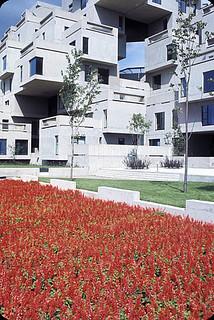Flowers in front of Habitat 67, a housing complex built in Montreal for Expo 67 / Des fleurs devant Habitat 67, un ensemble résidentiel construit à Montréal à l'occasion d'Expo 67