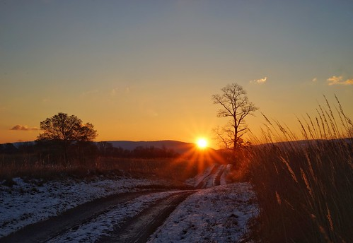sunrise blandy statearboretumofvirginia flare 365the2017edition 3652017 day8365 8jan17 snow field meadow