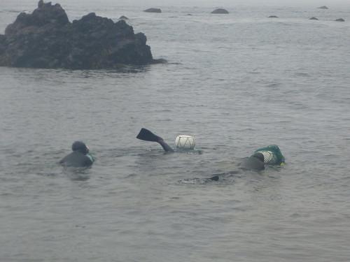 Co-Jejudo-Seongsan-Femmes plongeuses (12)