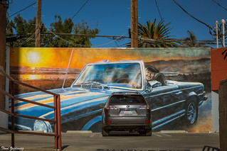 Image of Venice Beach. mural painting wall art car minivan humor publicart zajdowicz 366 365 venicebeach losangeles california canon eos 5d3 5dmarkiii dslr digital outdoor outside availablelight color accident ef24105mmf4lisusm lightroom