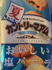 Salty Vanilla cookies