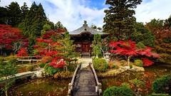 Японские курорты приняли максимальное количество туристов за май