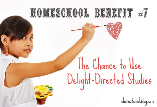 Homeschool Benefit No. 7 - The Chance to Use Delight-Directed Studies
