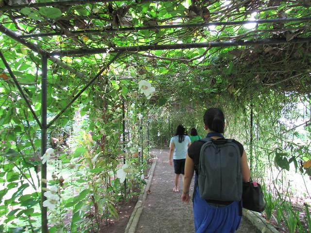 Balay Indang 2015