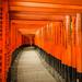 Fushimi Inari-taisha by fvcpp