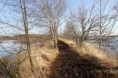 Hertogenpad_LAW13_NL_wandelen_d10_6
