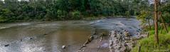 The Yarra River @ Warrandyte