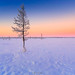 Winter on north by czdistagon.com