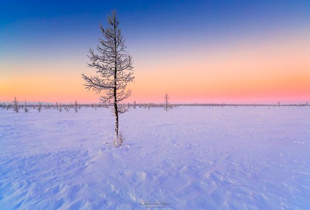 Winter on north