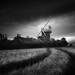 Old Buckenham 20/06/15 by Matthew Dartford