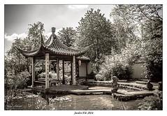 Jardin Yili (Yvelines)