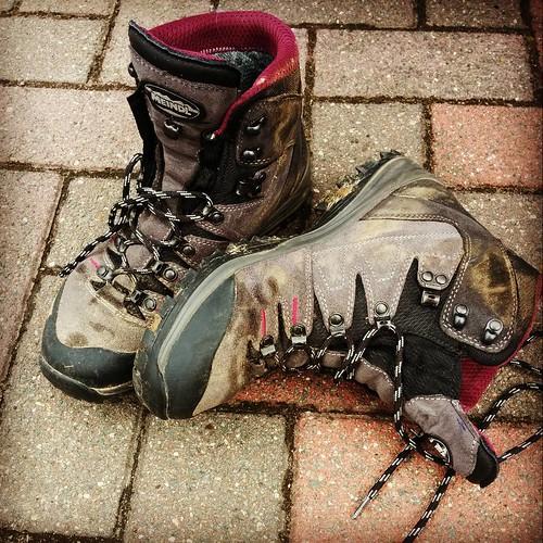 De nieuwe schoenen, na 23km door de Vlaamsche heuvels niet meer zo blinkend nieuw, helemaal goedgekeurd! 👍 #meindl #hikingshoes