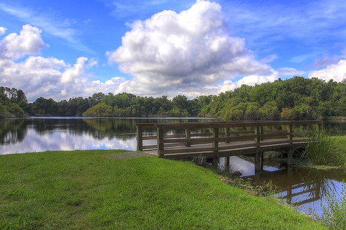 bridge sky lake college water grass clouds canon campus landscape eos university florida alice gainesville walkway 60d