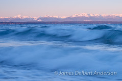 Carkeek Waves I