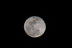 A full moon in a cold night